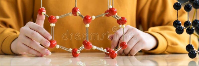 Unrecognisable Studentin, die Molekülstrukturmodell hält Wissenschaftsklasse lizenzfreie stockfotografie
