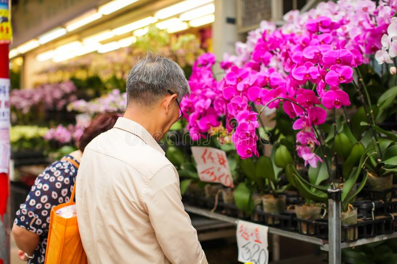 Unrecognizable elderly asian man choose various beautyful pink orchid in pots for gift in street flower market. Unrecognizable elderly asian man choose various stock photo