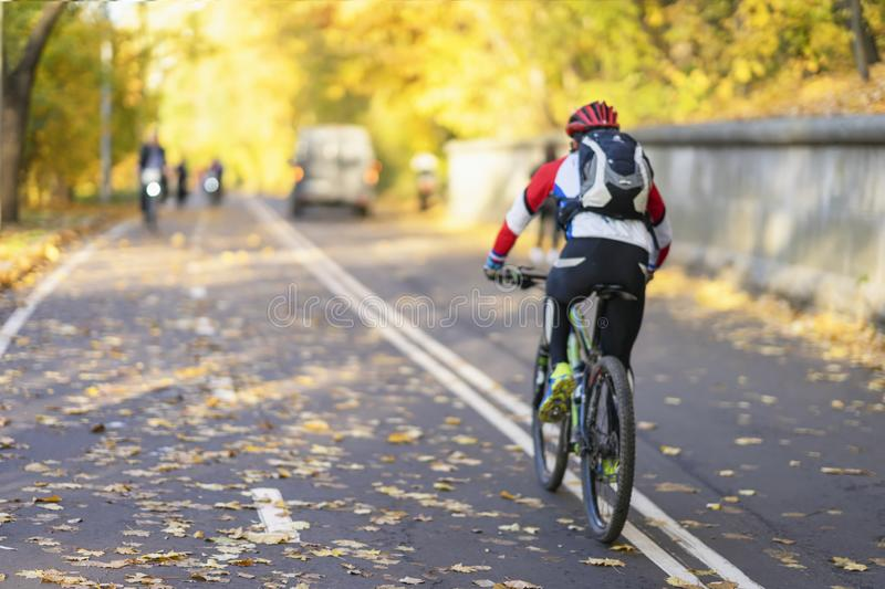 Unrecognizable guy, back to us riding bike in autumn park, bright colorful trees, sunny day, fall foliage. Healthy royalty free stock photo