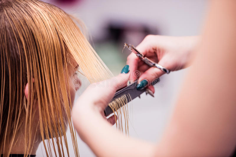 Unrecognizable hairdresser cutting hair of her beautiful young c royalty free stock image