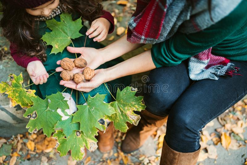 A mother with a toddler daughter sitting in forest in autumn nature, holding nuts. royalty free stock images