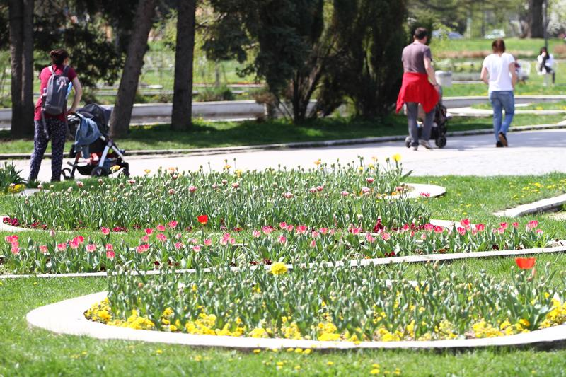 Unrecognizable people walk and relax in the park in springtime. Sunny weather concept. People walk in a park around flowers royalty free stock photo