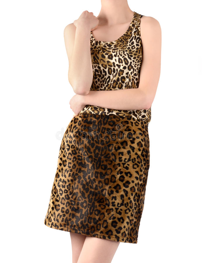 Unrecognizable woman dressed in leopard print skirt and blouse. Jungle animal print fashion style. Isolated on white background royalty free stock image