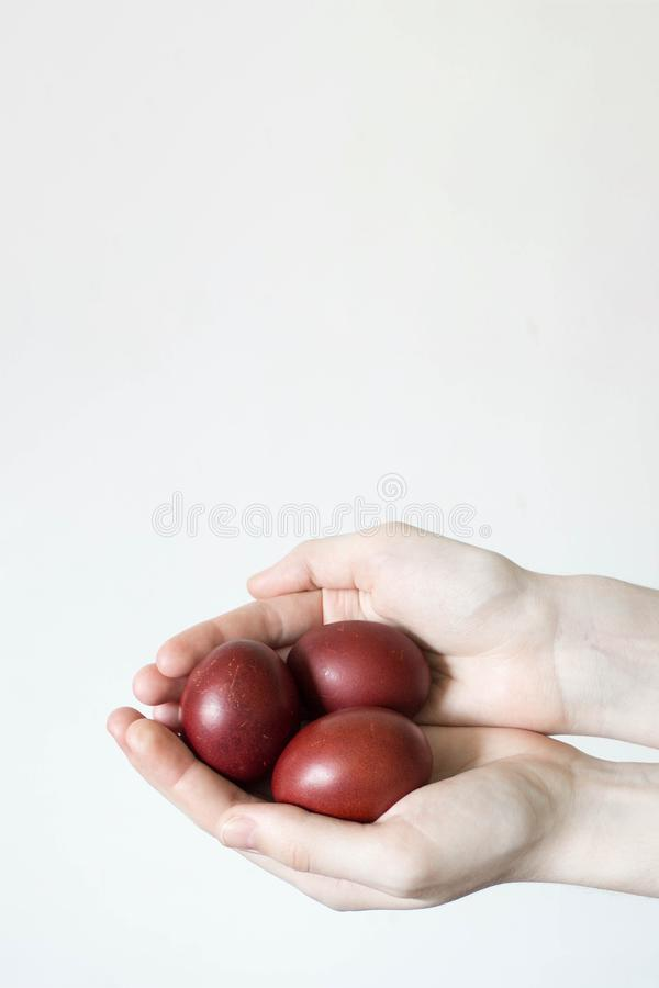 Unrecognizable women hand holding up three eggs. Knocking a red Easter egg. Old holiday tradition. Isolated on white background. royalty free stock image