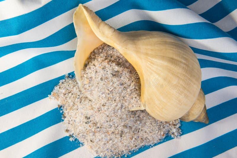 Unrefined естественные соль и раковина моря стоковое фото