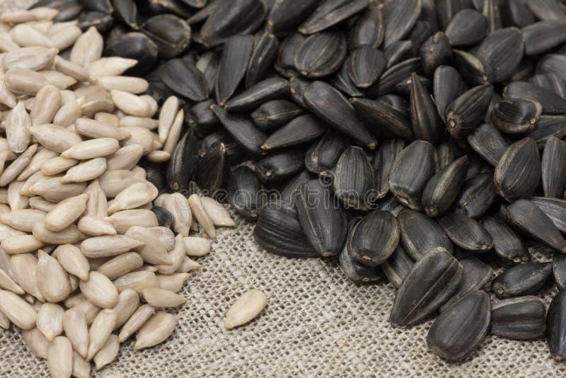 Unrefined семена подсолнуха и, который слезли шелухи стоковые изображения