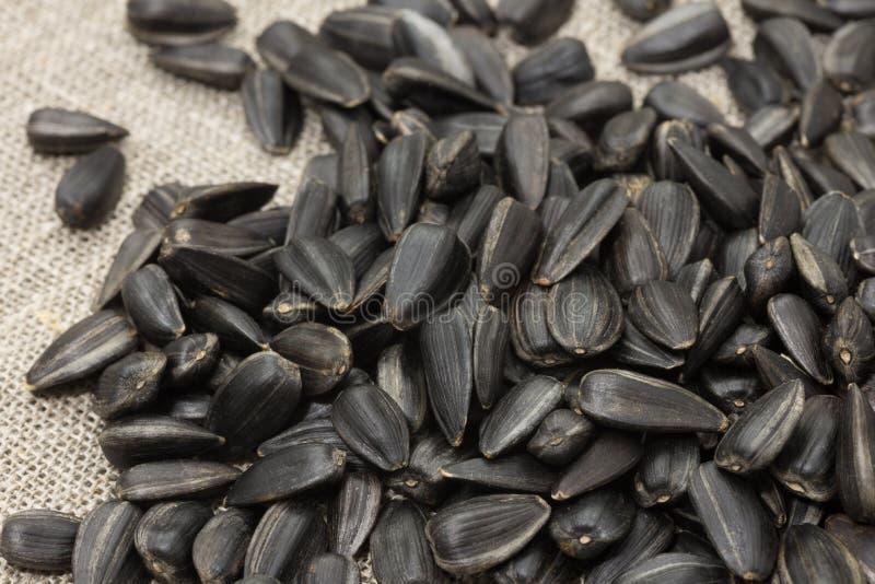 Unrefined семена подсолнуха стоковые фото