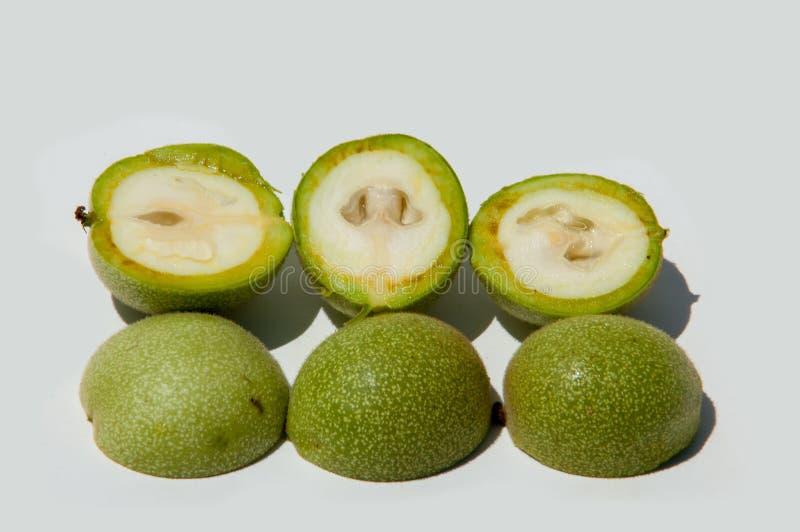 unripe ξύλα καρυδιάς walnut στοκ φωτογραφίες με δικαίωμα ελεύθερης χρήσης