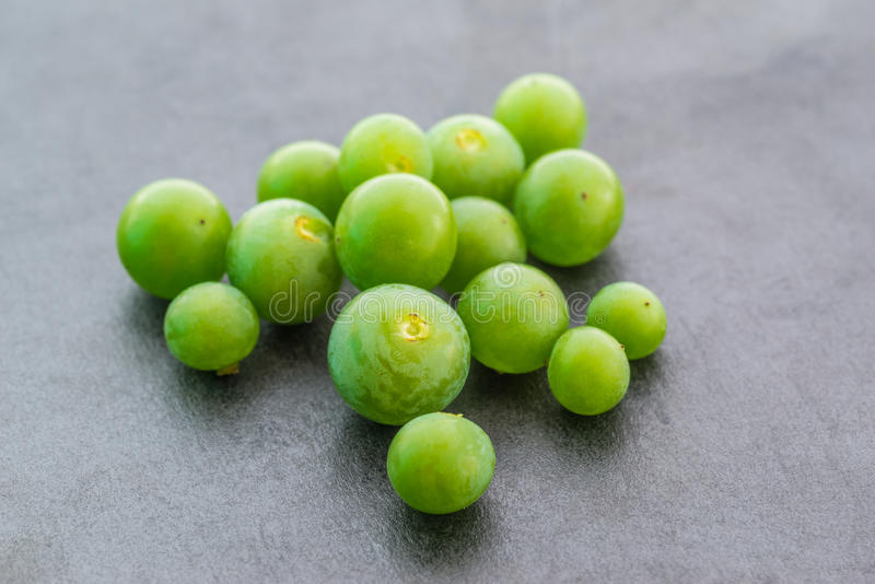Unripe green grapes. Unripe green grapes on dark background. Selective focus with shallow depth of field stock images