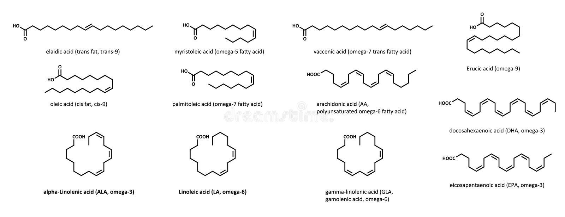 Unsaturated fatty acids (set) vector illustration