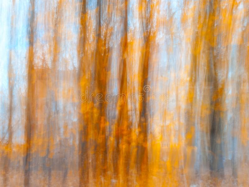 Unscharfe Baum-Stämme an einem Stadt-Park mit goldenem Autumn Leaves Absichtlicher Kamera-Bewegung ICM Fall feiner Art Design stockfotos