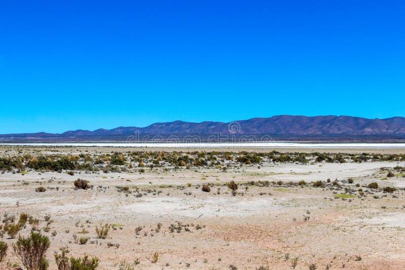 Unscharfe Landschaft der bolivianischen Wüste am sonnigen Tag mit blauem Himmel Eduardo Avaroa Park, Bolivien lizenzfreies stockbild
