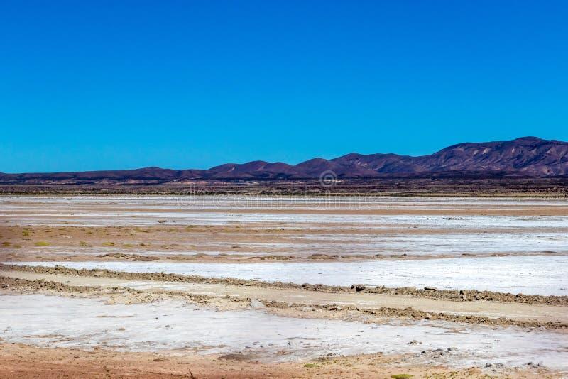 Unscharfe Landschaft der bolivianischen Wüste am sonnigen Tag mit blauem Himmel Eduardo Avaroa Park, Bolivien stockbild
