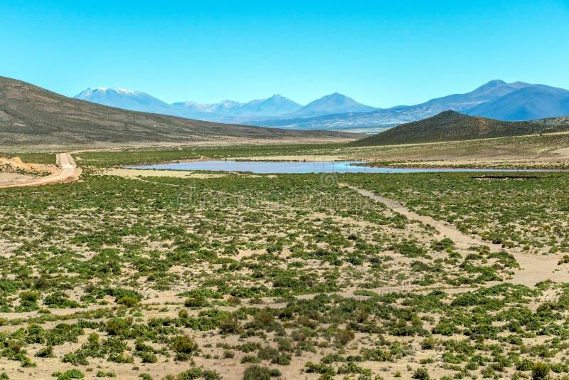 Unscharfe Landschaft der bolivianischen Wüste am sonnigen Tag mit blauem Himmel Eduardo Avaroa Park, Bolivien lizenzfreies stockfoto