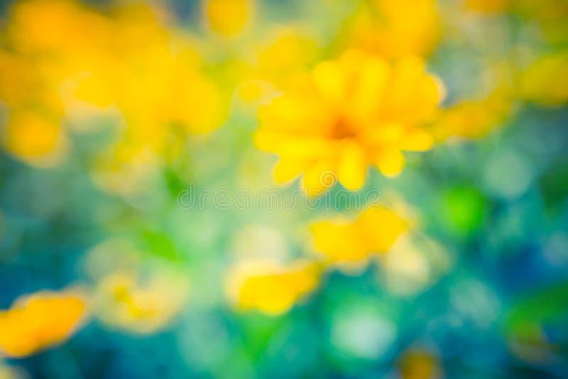 Unscharfe Leuchtorangeblumen auf grün-blauem unscharfem Hintergrund der Zusammenfassung Sch?nes Naturkonzept lizenzfreies stockfoto