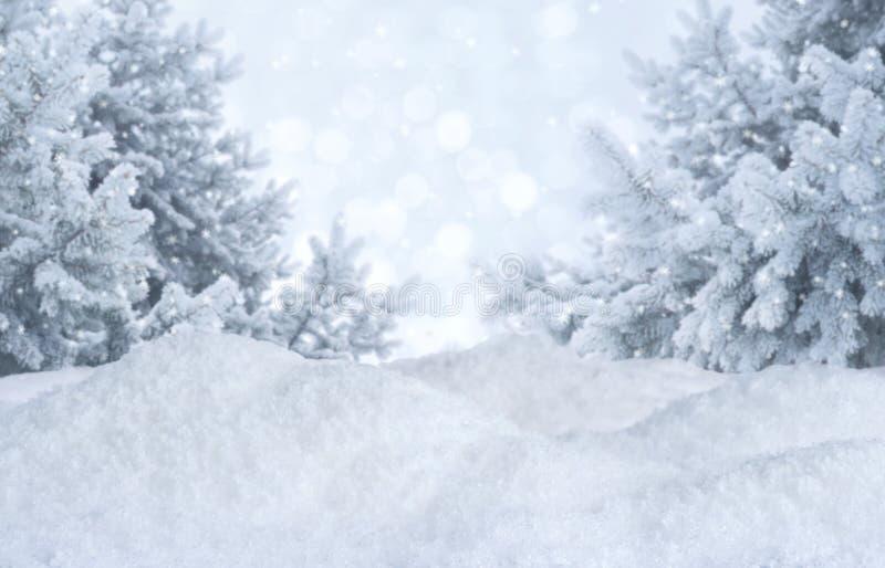 Unscharfer Hintergrund des Winters Zusammenfassung Eisige Landschaft mit Kiefern und Schneewehen lizenzfreies stockfoto
