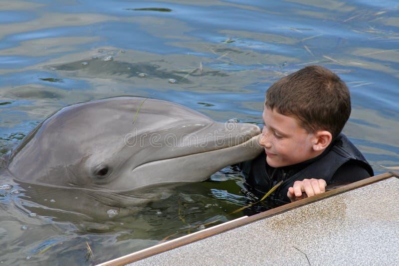 Unschuldiger junger Junge mit einem Delphin stockfotos