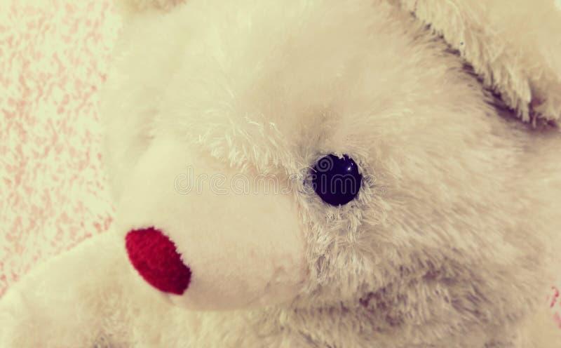 Unschuldiger Teddybär stockbilder
