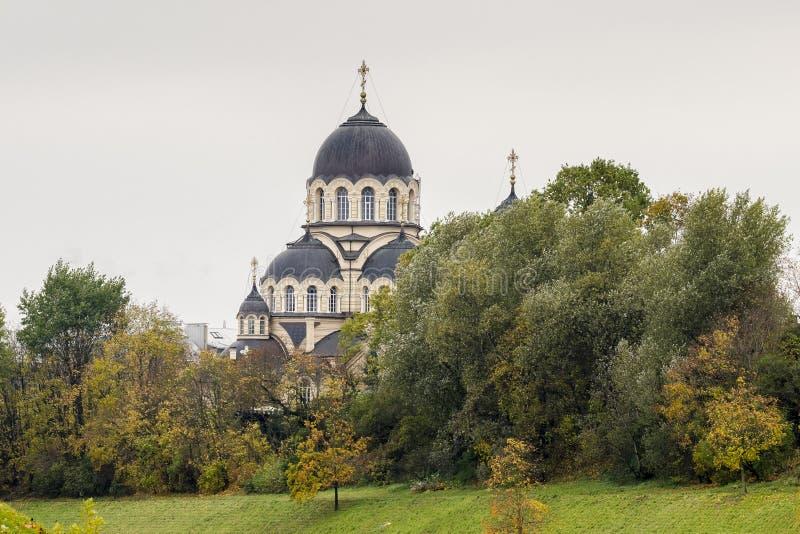 Unsere Dame der Zeichen-Kirche zwischen Bäumen stockfotos
