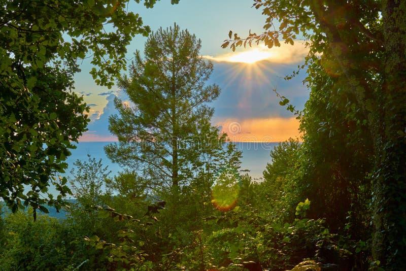 Unset sobre o mar com raios do sol com os verdes foto de stock