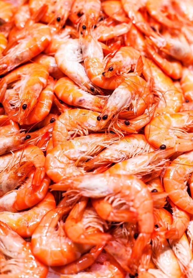 Unshelled γαρίδες τιγρών ως γαστρονομική μακροεντολή θαλασσινών Ομάδα Shri στοκ φωτογραφίες με δικαίωμα ελεύθερης χρήσης