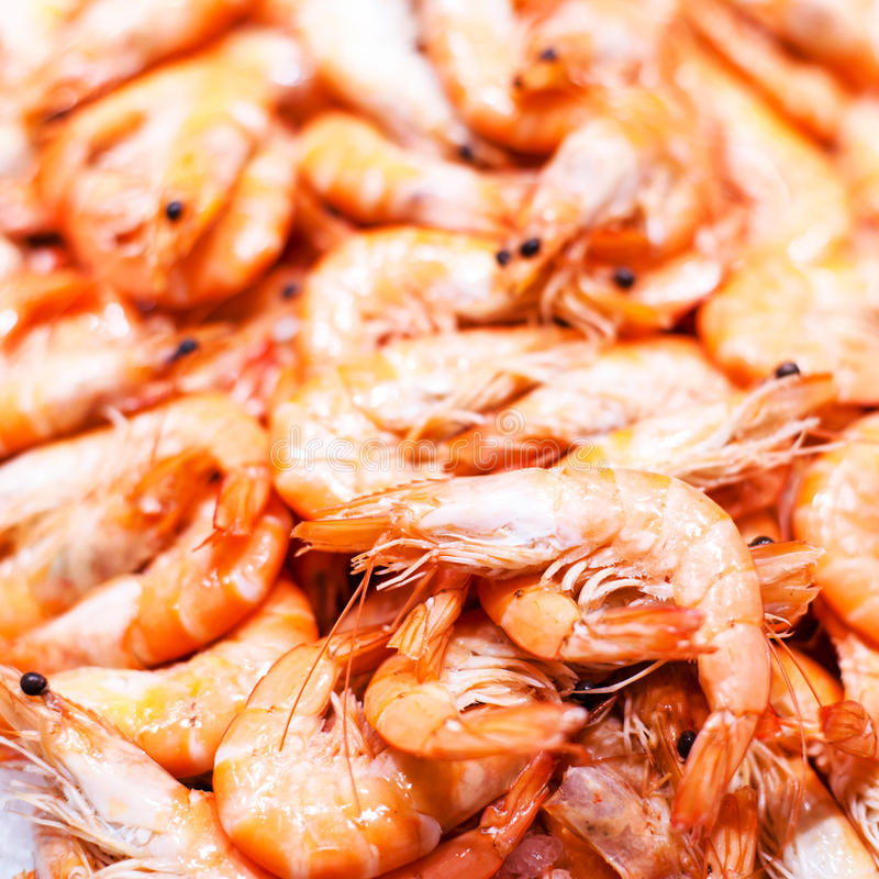 Unshelled γαρίδες τιγρών ως γαστρονομική μακροεντολή θαλασσινών Ομάδα Shri στοκ εικόνα με δικαίωμα ελεύθερης χρήσης