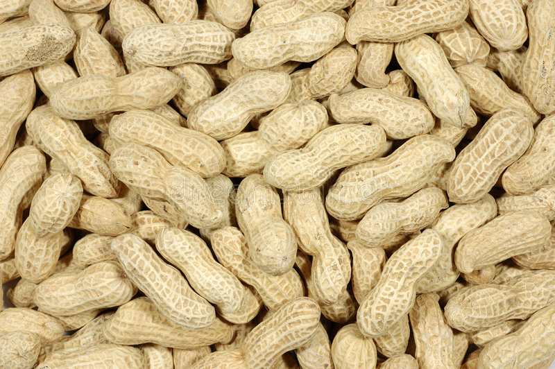Unshelled peanuts royalty free stock image