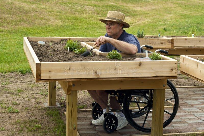 Untauglicher Gärtner stockfoto