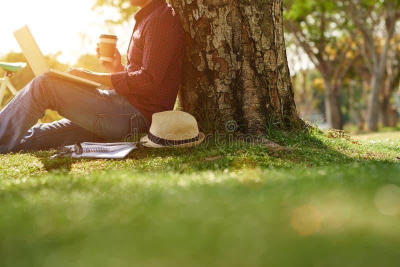 Unter Baum mit Laptop stockbilder