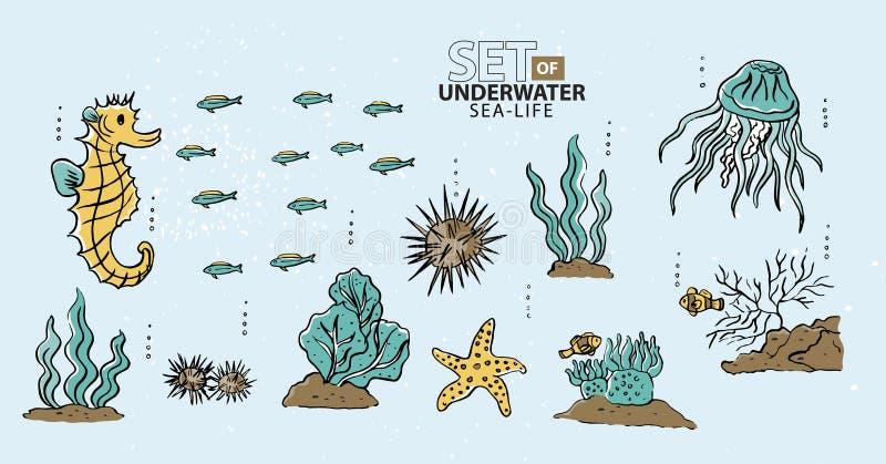 Unter dem Meer, den Fischen und dem Meeresleben vektor abbildung