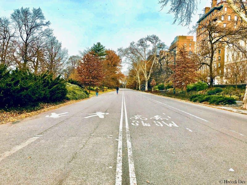 Unter den vibrierenden Farben des Parks weg laufen machte mich so glücklich lizenzfreies stockbild