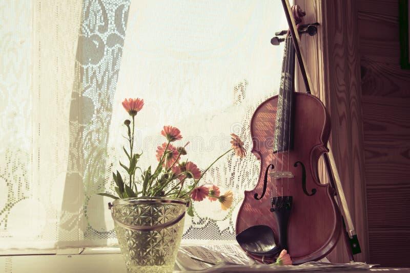 Untere Hälfte der Violine mit Noten und Blumen die Front die Front der Geige auf Fensterhintergrund lizenzfreies stockfoto