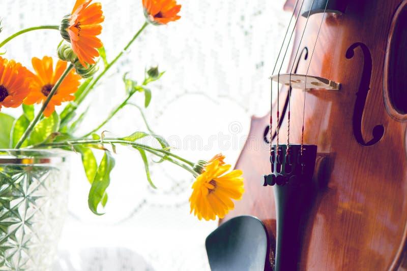Untere Hälfte einer Violine mit Noten und Blumen die Front der Geige auf Fensterhintergrund lizenzfreies stockfoto