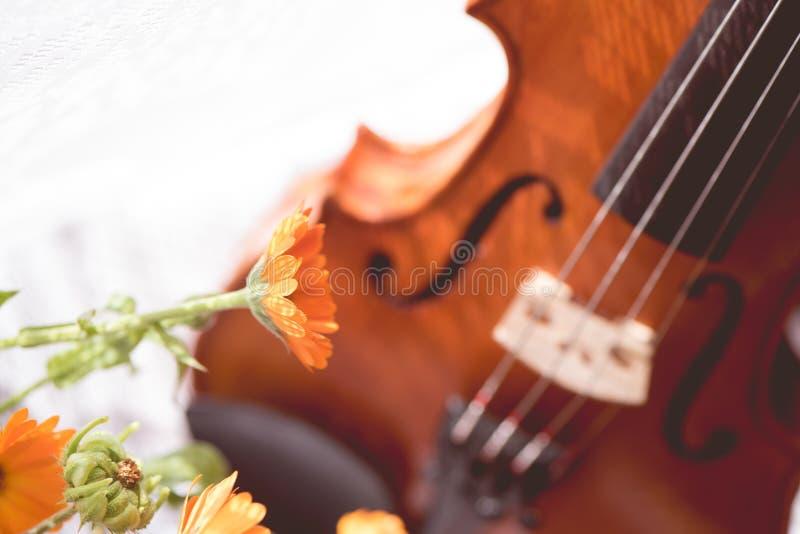 Untere Hälfte einer Violine mit Noten und Blumen die Front von oben stockfotos