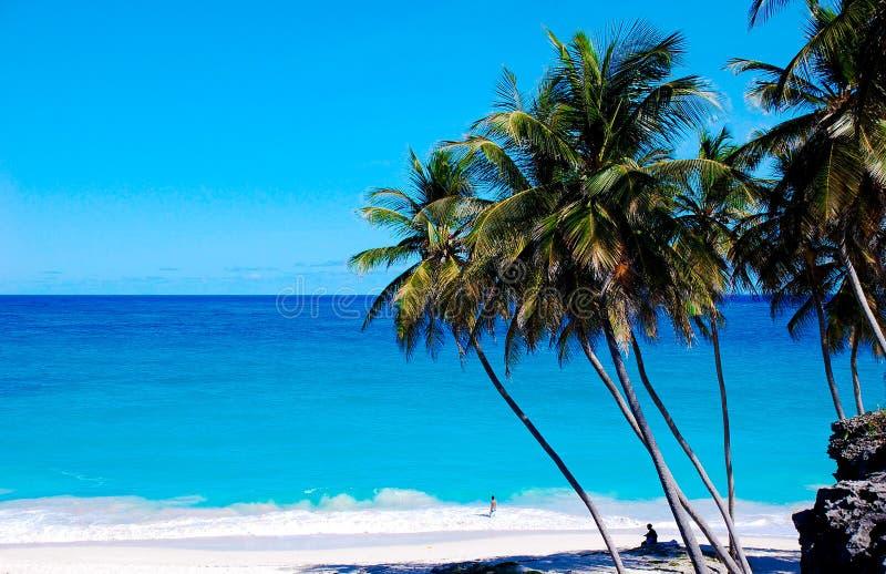 Unterer Schacht-Strand Barbados stockfoto