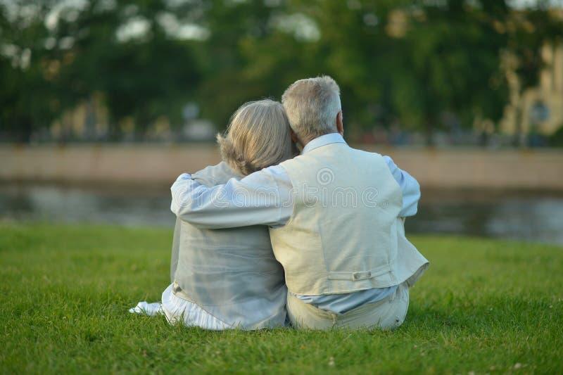 Unterhaltende ältere Paare stockfotografie