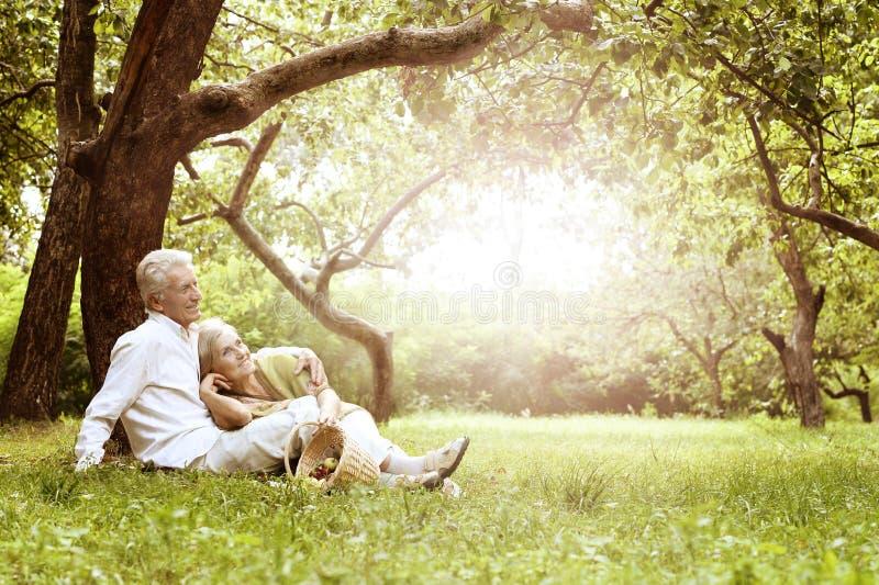 Unterhaltende alte Paare auf Picknick stockbild