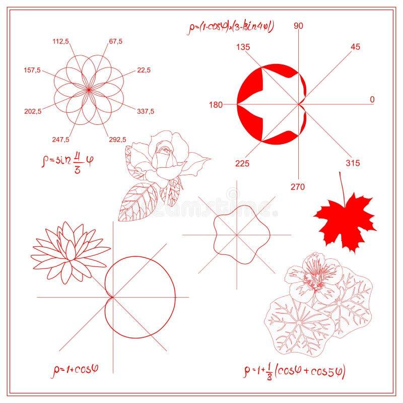 Unterhaltungsmathematik Trigonometrische Funktionen und algebraische Diagramme des Seeroseblattes, des Ahorns und der Kapuzinerkä lizenzfreie abbildung