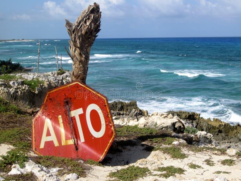 Unterlassungsozeanklippen des Stoppschildes und des Baums in Cozumel, Mexiko stockfotos