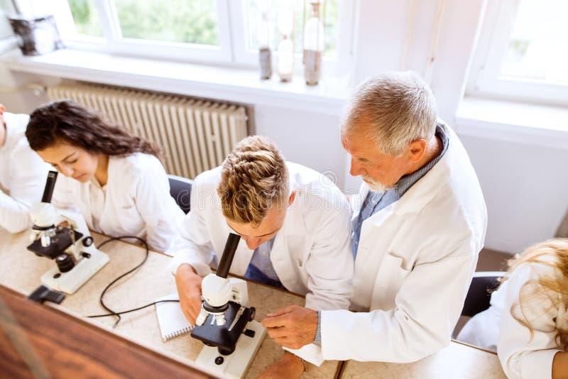 Unterrichtende Biologie des älteren Lehrers zu den hohen Schülern in der Arbeit stockbild