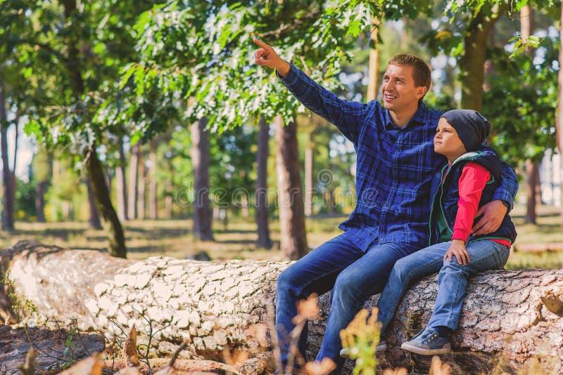Unterrichtender Sohn des Elternteils im Wald stockfotografie