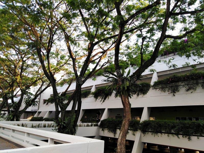 Unterrichtendes Gebäude der Elektrotechnik-Abteilung für technologische Universität Nanyang in Singapur stockbild