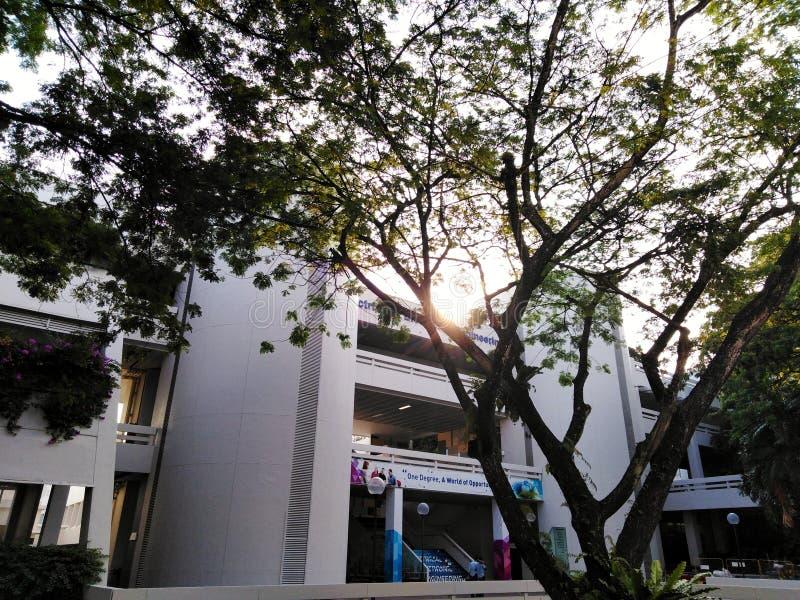 Unterrichtendes Gebäude der Elektrotechnik-Abteilung für technologische Universität Nanyang in Singapur lizenzfreie stockbilder
