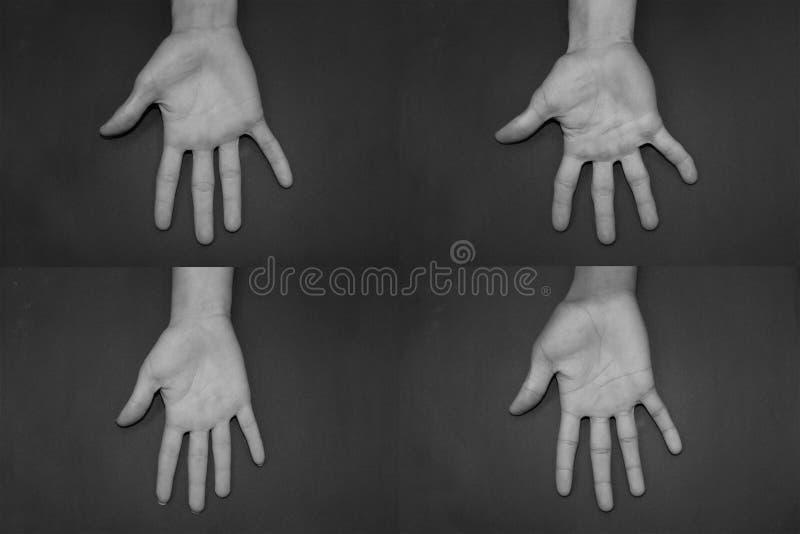 Unterschied bezüglich der Hände stockbilder
