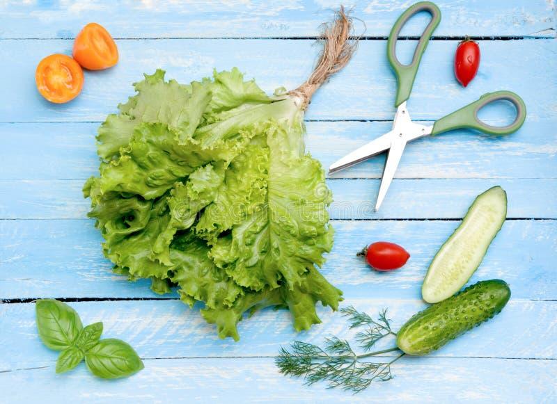 Unterschiedliche Art des Gemüses für Salat stockfoto