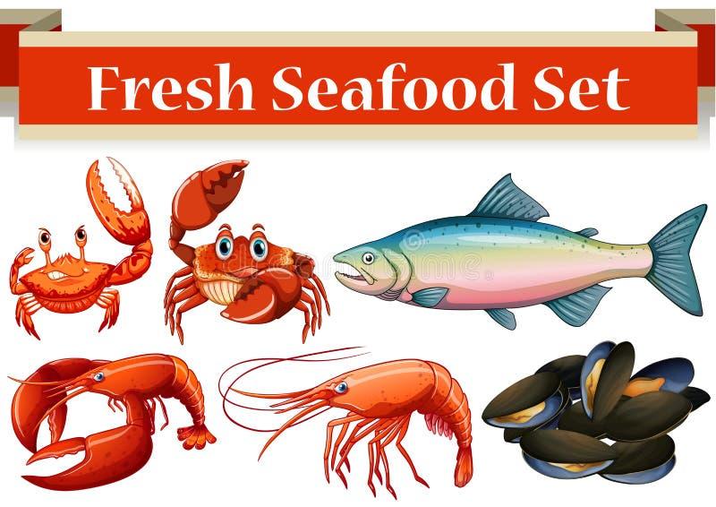 Unterschiedliche Art von frischen Meeresfrüchten vektor abbildung