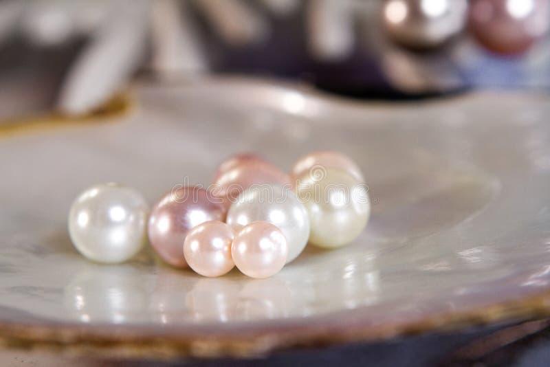 Unterschiedliche Größe von Perlen auf dem Oberteil lizenzfreie stockfotografie
