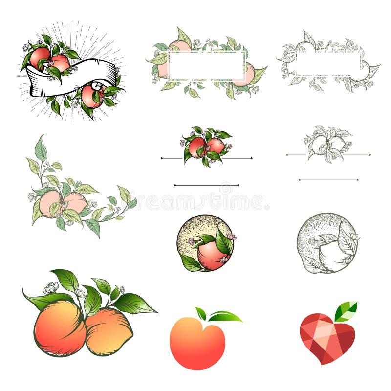 Unterschiedlicher Pfirsichlogo-Entwurfssatz stockbild