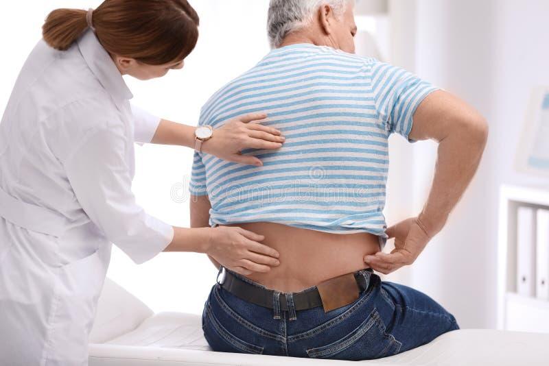 Untersuchungspatient des Chiropraktors mit Rückenschmerzen lizenzfreie stockfotos