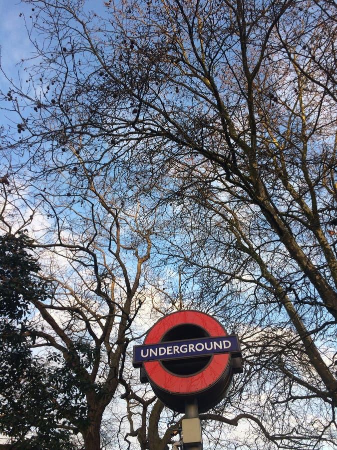Untertage-London-Baum lizenzfreie stockfotografie